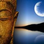 Земная ветвь месяца и жизненная стадия души