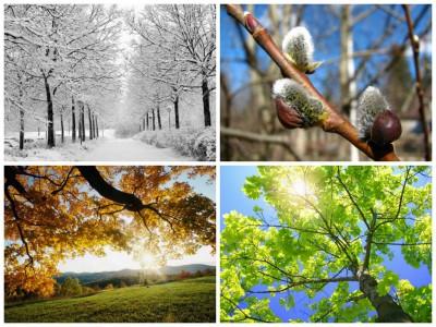 Сила элемента и сезон